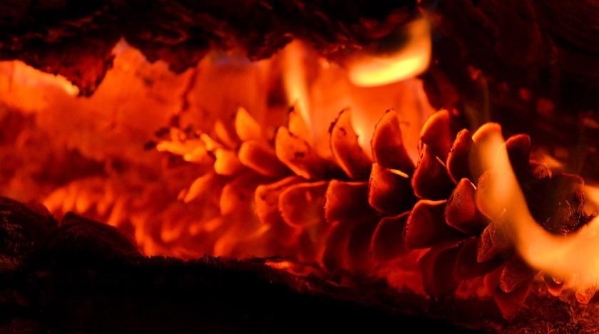 Fireplace 11-20-2013